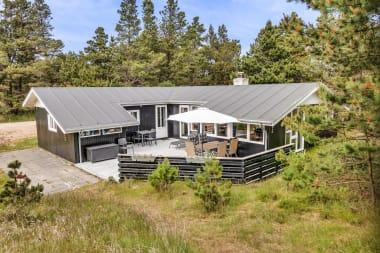 Ferienhaus 038 - Dänemark