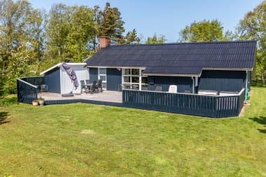 Ferienhaus 343 - Dänemark