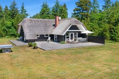 Ferienhaus 130 - Dänemark