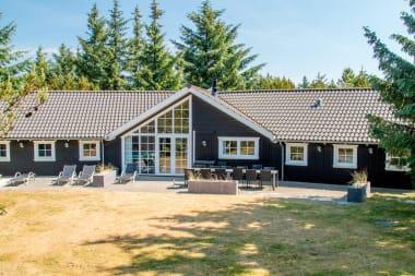 Ferienhaus 055 - Dänemark