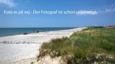 Ferienhaus 029 - Dänemark