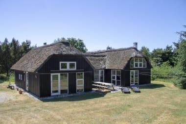 Ferienhaus 543 - Dänemark