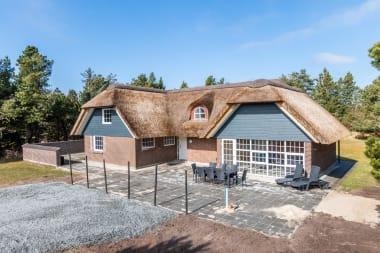 Ferienhaus 203 - Dänemark