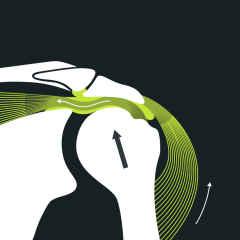 Anatomie d'un conflit de l'épaule