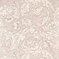 Bachelors Button Wallpaper/Faded sea pink
