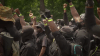 Armed Black Protesters Of The 'Not F**king Around Coalition' Hold Demonstration At Georgia Park, Denounce The KKK