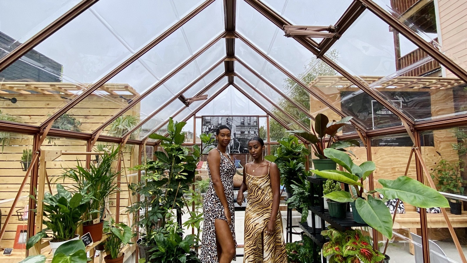 These Oakland Women Opened A Plant Nursery To Prioritize Peace Amid Protests