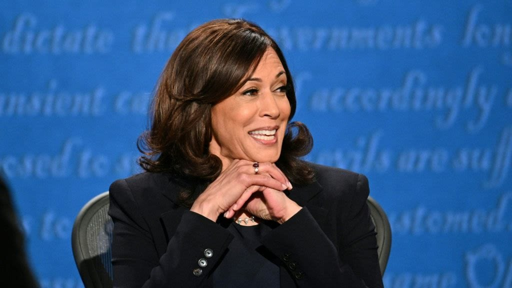 American Airlines Drops PR Consultant Like A Hot Potato After He Calls Kamala Harris Out Of Her Name