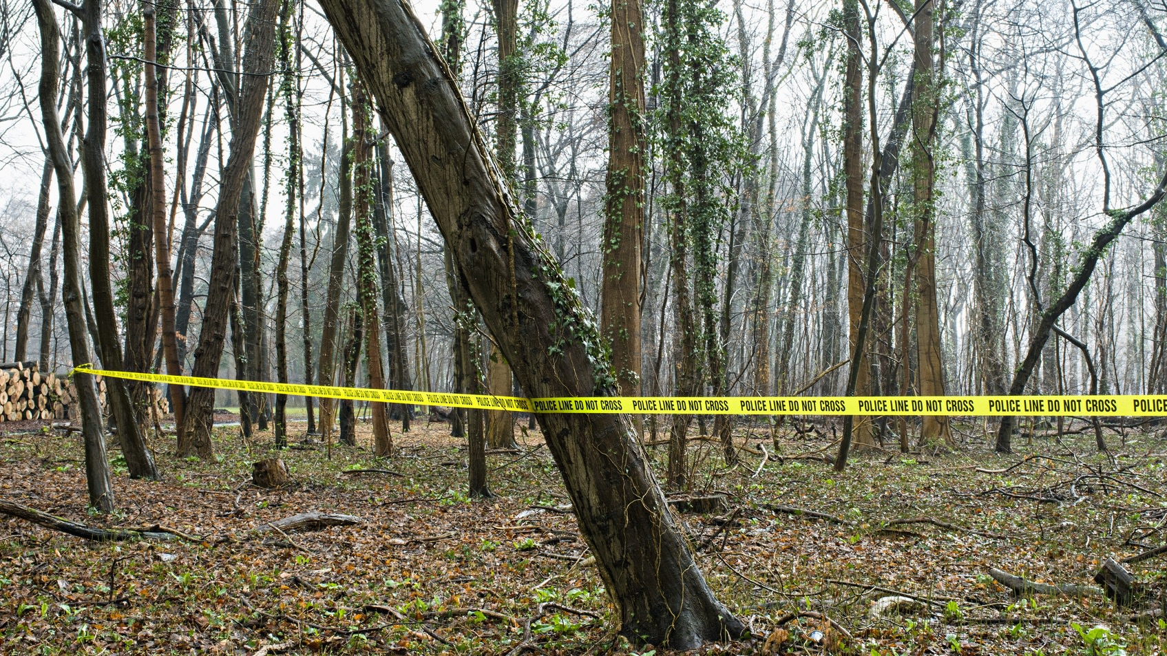 12-Year-Old Atlanta Boy Found Shot To Death In Woods Near Home, Family Pleads For Answers
