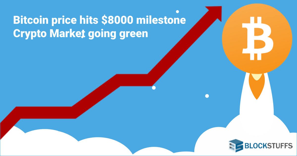 Bitcoin price hits $8000 milestone: Crypto Market going green