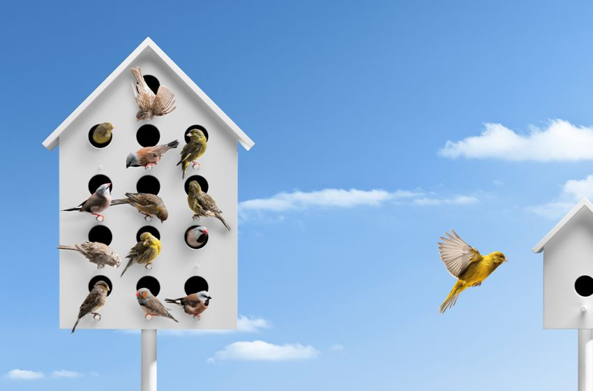 8 Ways to Manage Your Team While Social Distancing