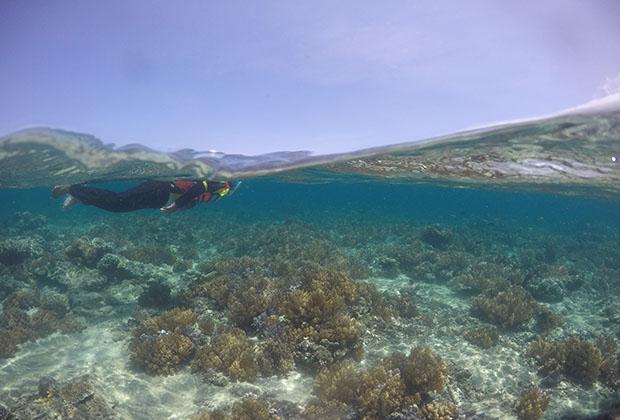 Wisata Gili Layar di Lombok