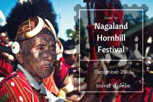 cover for Nagaland Hornbill Festival Guide for 2017
