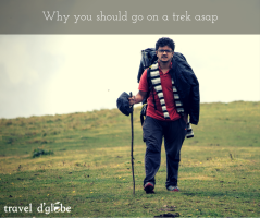 cover for Why should you join a trek this weekend ?