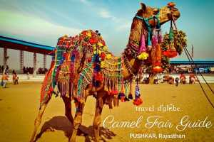 cover for Pushkar Fair - Experience Incredible India's greatest tribal gathering