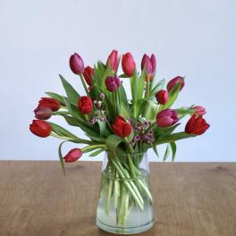 Tulips and Fudge