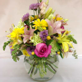 Spring Daisies Delivery West Palm Beach Burst Of Class Florist
