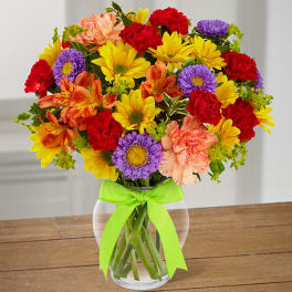 Get Well Daisies Delivery Fort Myers Ruth Messmer Florist