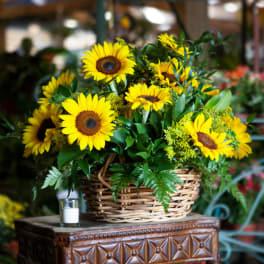 Get Well Flowers Delivery Miami Hirni S Wayside Garden Florist