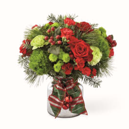 Carnations Delivery Wichita Falls House Of Flowers