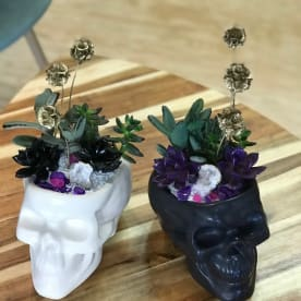 Mulder & Skully Succulent Planters