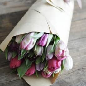 Tiptoeing Through Tulips After Madisons >> Madison Avenue Florist Send Tulips Flower Delivery Sacramento Ca