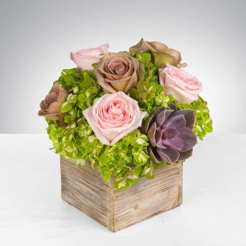 Arlington Heights Florist