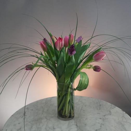 Tulips in Orbit