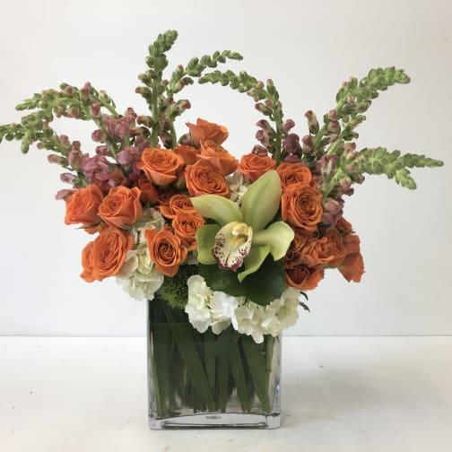 Washington Florist   Flower Delivery by Volanni