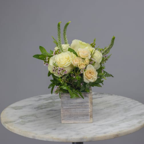Studio City Florist   Flower Delivery by Dolce Blooms