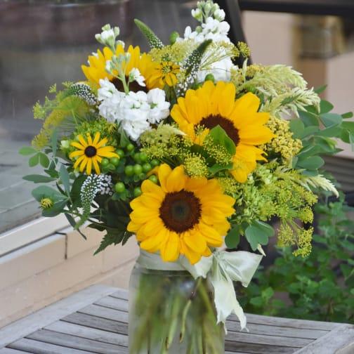 Takoma Park Florist   Flower Delivery by Park Florist