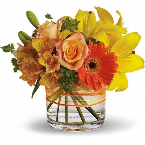 San Jose Florist | Flower Delivery by Brunettos Florist & Gifts