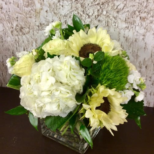 Studio City Florist | Flower Delivery by Dee's Flowers