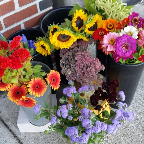 Newton Florist | Flower Delivery by The Crimson Petal Inc
