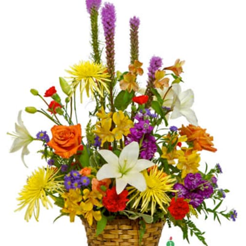 Miami Florist Flower Delivery By Flowers To Go Miami