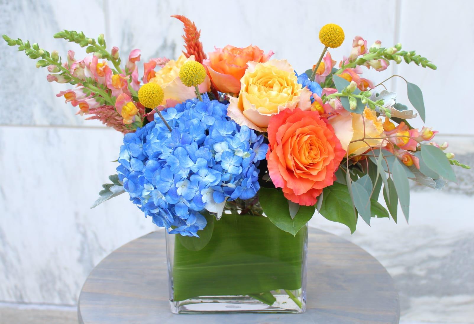 16bb7df8c41 https   www.bloomnation.com florist abbeville-florist-gifts  https   res ...