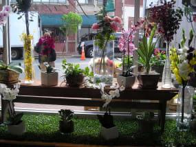 Imagine Flowers Winston Salem Nc Florist