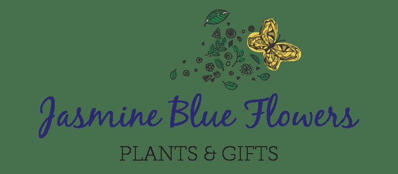Sherman Oaks Florist   Flower Delivery by Jasmine Blue Flowers