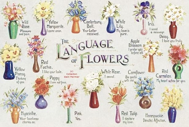 Make it personal, know the meaning of each flower. | Blog