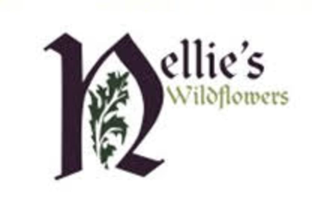 Somerville Florist | Flower Delivery by Nellie's Wildflowers