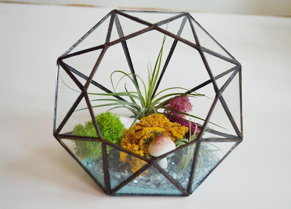 Air Plant Diamond Garden Terrarium By Sunny Florists