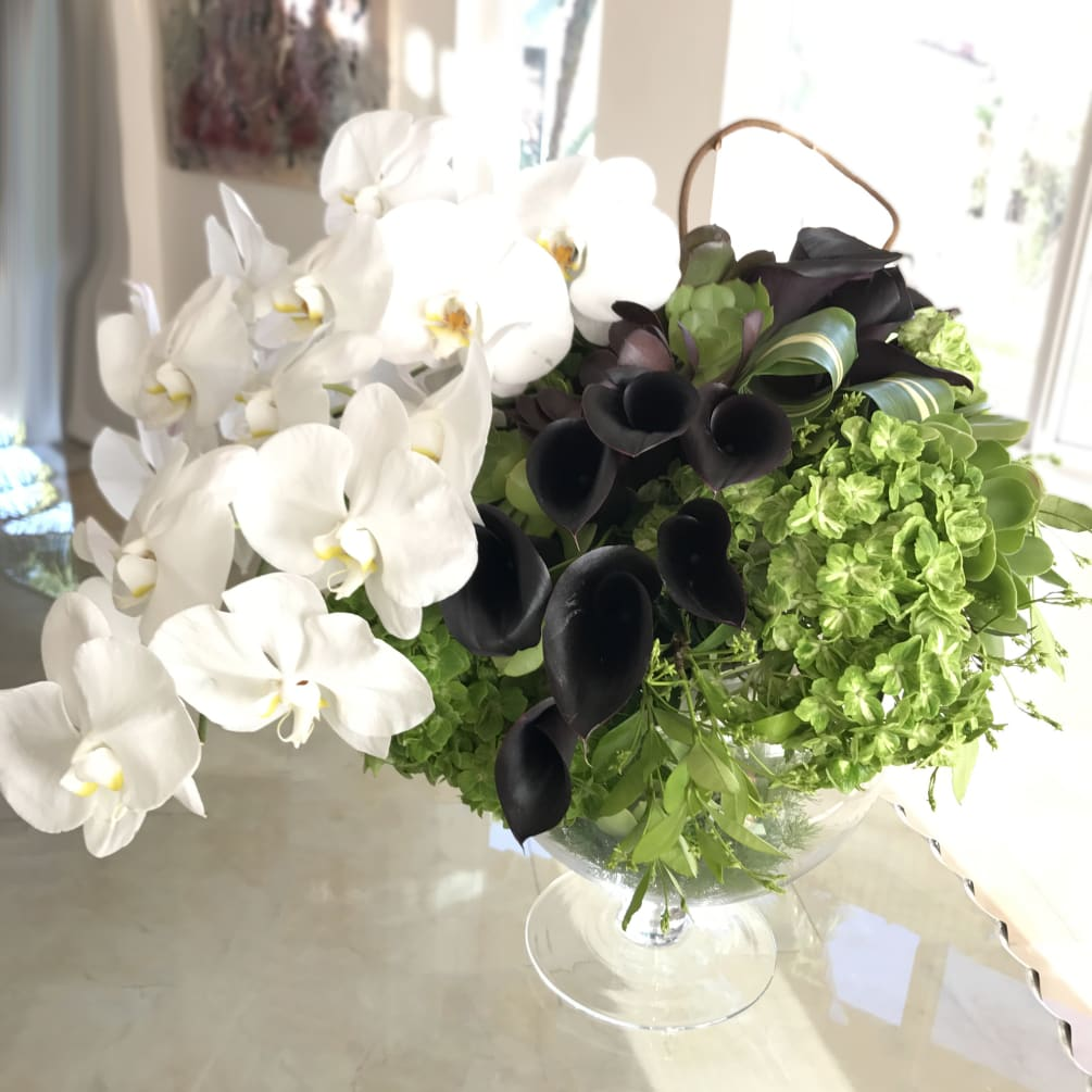 Simply Chic Phalaenopsis Black Calla Lilies And Hydrangeas By Le