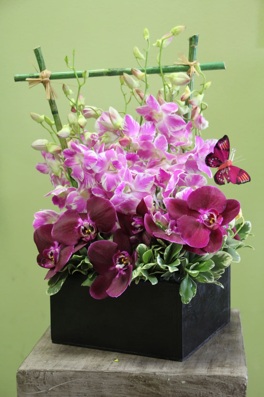 Leslie Tropical Exotic Orchids With Bamboo By Andes Florist