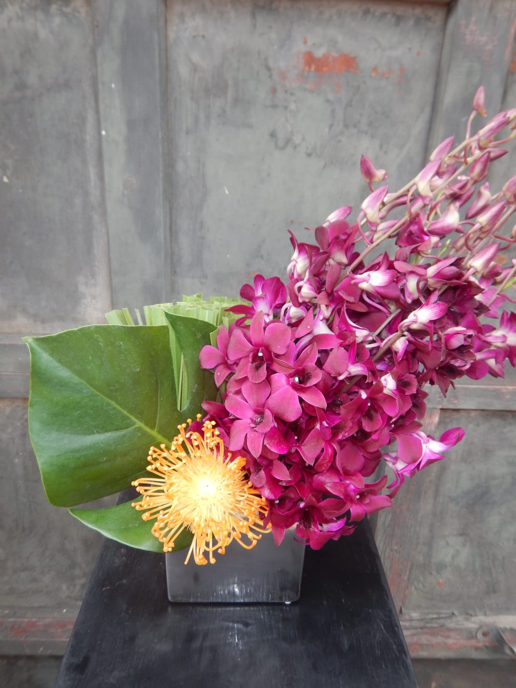 Shooting Star. Bright Color with Great Lines. Dendrobium Orchids, Palmetto Palm, Monstera Leaves, Orange