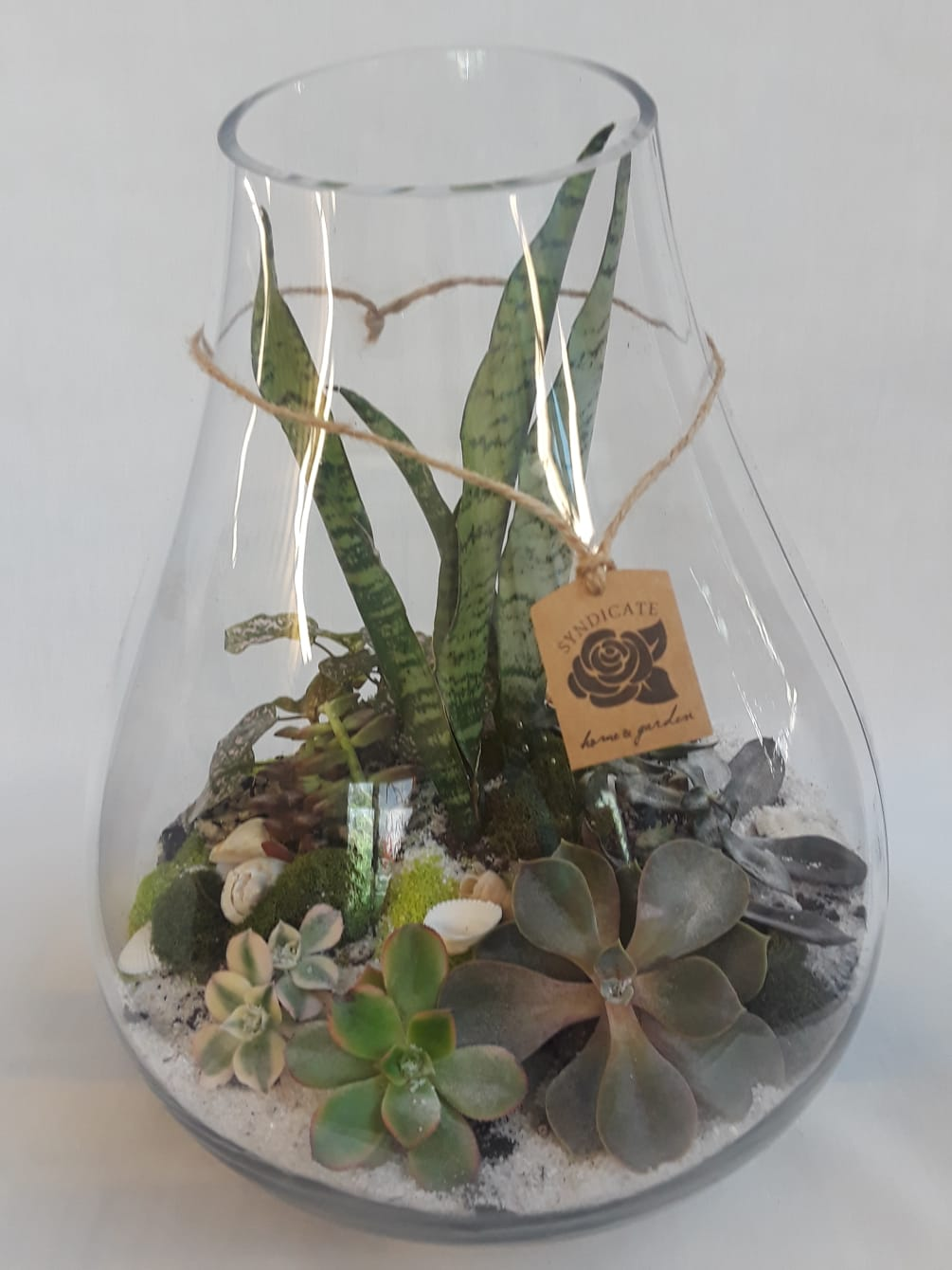 Artisan Terrarium By Teefey Flowers And Gifts