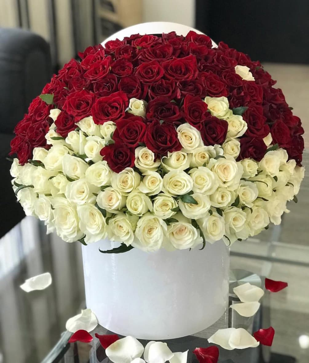 150 White and Red Roses Arrangement in a Box