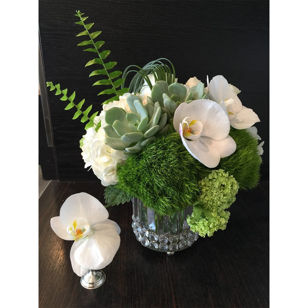 A simple low arrangement with white blooms, mosses and succulents, all in