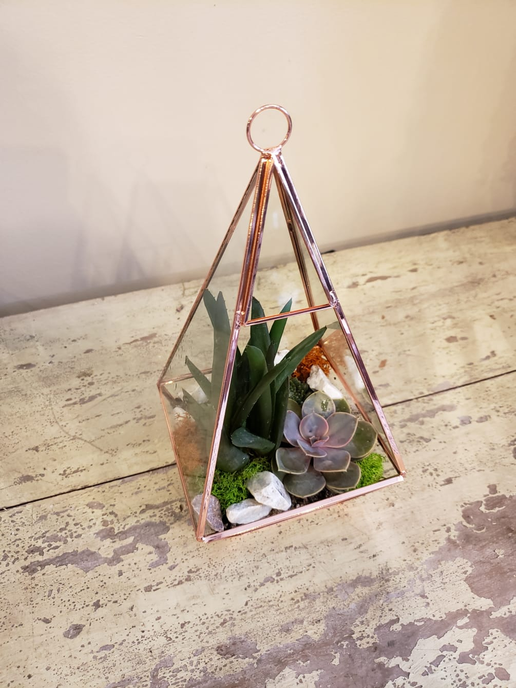Rose Gold And Glass Terrarium By Simpson Company The Flower Studio