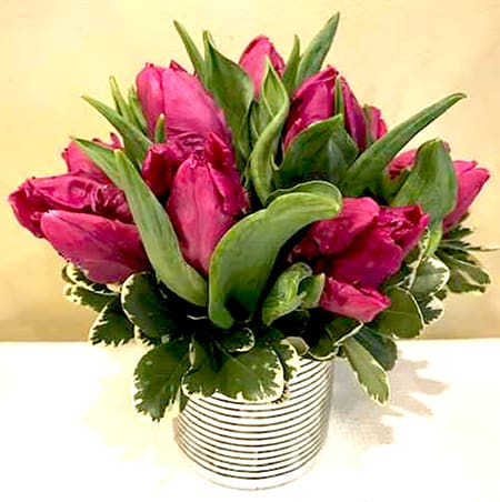 A pretty posy of dutch purple princess tulips in a silver spiral