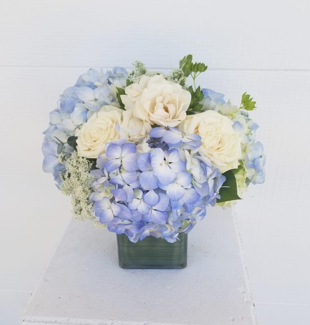 Blue Hydrangea Cube By Paradise Valley Florist